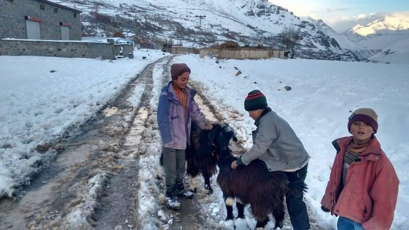 ضلع غذر کے بالائی علاقوں میں شدید برفباری، زلزلہ متاثرین رُل گئے، امدادی کاروائیاں متاثر