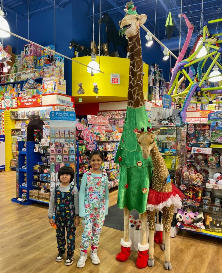 How to have a successful trip to the toy store