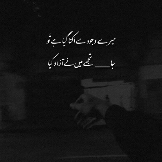 2 Line Heart Touching Urdu Poetry