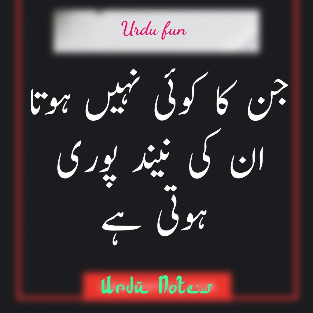 Funny Quotes In Urdu 3