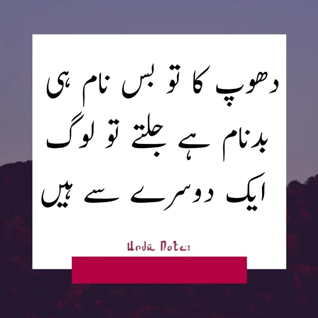 Funny Quotes In Urdu 2
