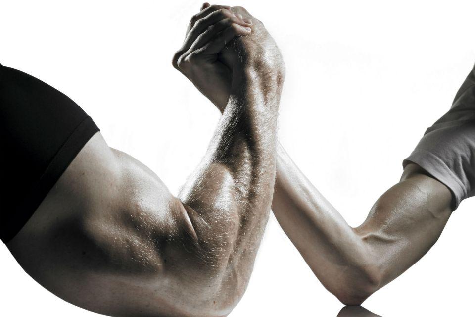 мускул