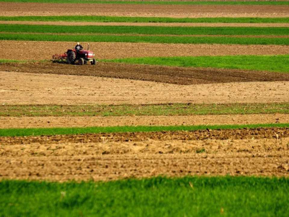 ниви земеделски земи