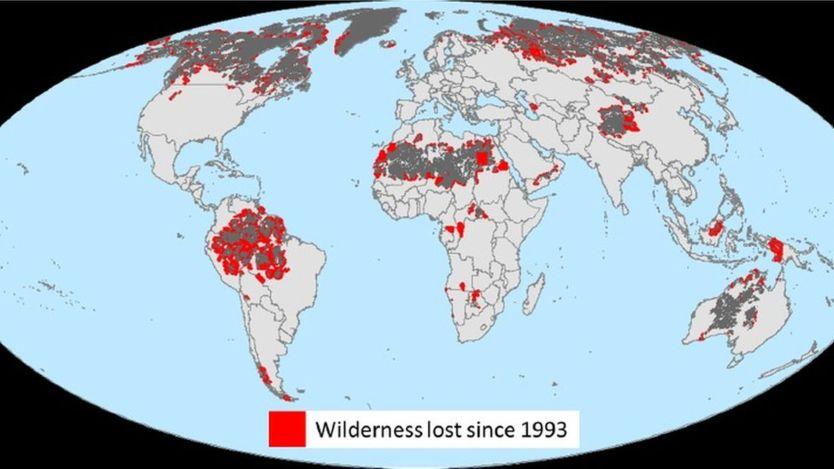 Карта: WCS