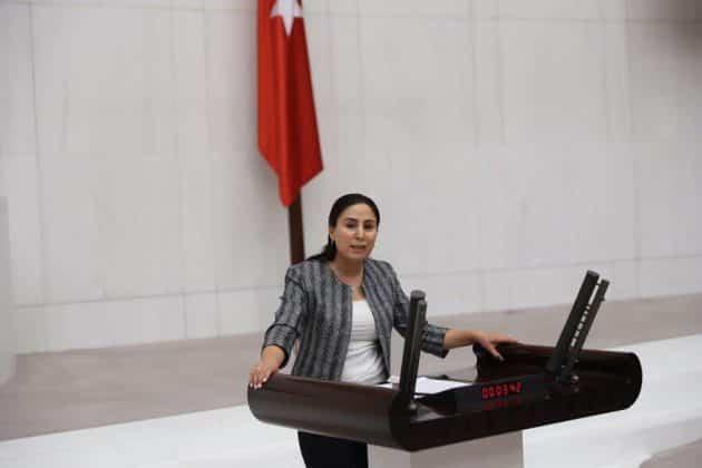 Ayşe Sürücü- Şanlıurfa Milletvekili