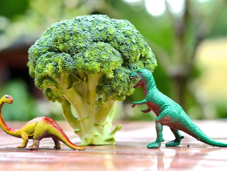 Vitamin B12: Wie gut sind vegan lebende Kinder versorgt?