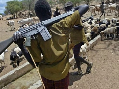 Youths Apprehend Herdsmen, Attack Cows Over Abduction Of Two Siblings In Delta School