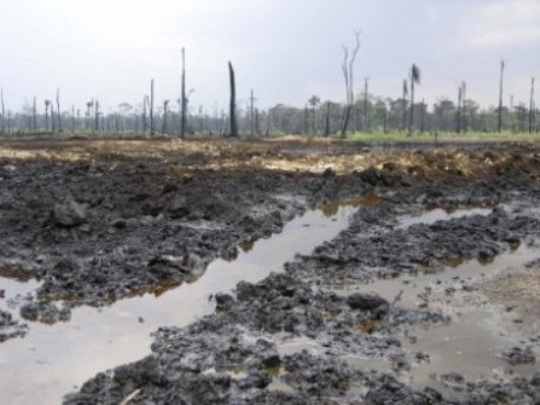 Social Media, NGOs and the Niger Delta Struggle
