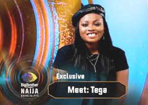 BBNaija: Consequences Of Alleged Tega Action As Urhobo Married Woman
