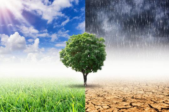 Climate Change Hysteria