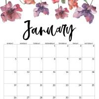 Blank Calendar January 2020 Printable A4 Page