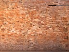 Edward's fav photo - a brick wall!