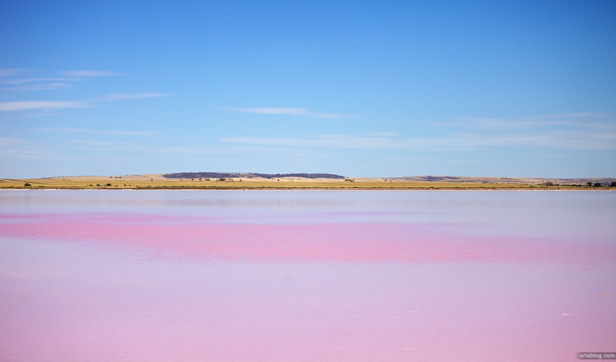 2010 озеро Bumbunga Lake, South Australia