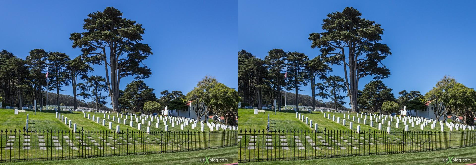 2013, США, Калифорния, Национальное кладбище Сан Франциско, 3D, перекрёстная стереопара, стерео, стереопара