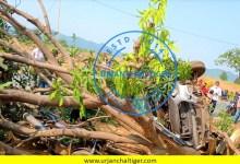 Photo of चितरंगी : तेज रफ्तार कार बाईक को टक्कर मारते हुए पेड़ से टकराया,चालक गंभीर रूप से घायल।