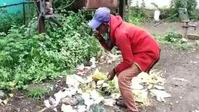 Photo of भूख की लाचारी, कचरे के ढेर से खाना ढूंढ कर एक साथ खाते बुजुर्ग और कुत्ता!