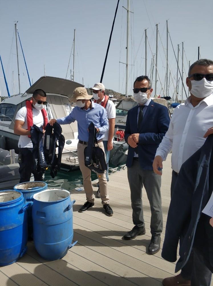 Kaçak Avlanan Deniz Patlıcanları Denize Salıverildi