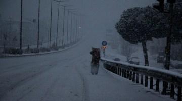 İzmir-Ankara D300 Karayolunda Trafiğe Kar Engeli