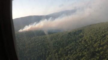 İzmir'deki orman yangını kısmen kontrol altında
