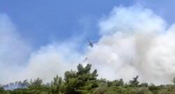 İzmirde Orman Yangını Kontrol Altında