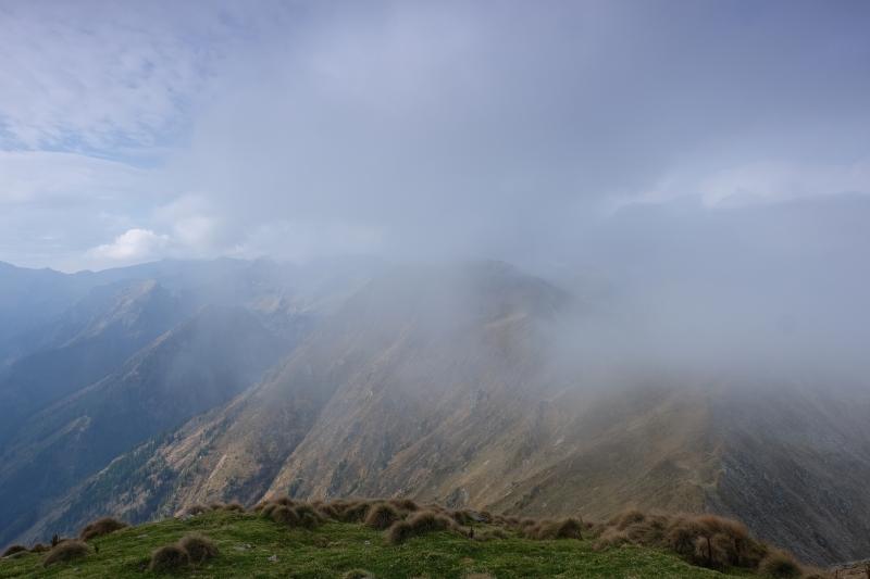 Spateck bei Nebel