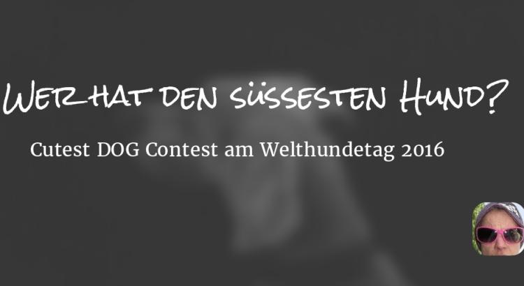 Wer hat den süssesten Hund? – Cutest DOG Contest am Welthundetag 2016