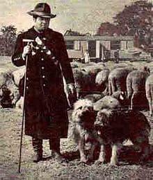 Alte Darstellung eines Hirten mit Schafpudel