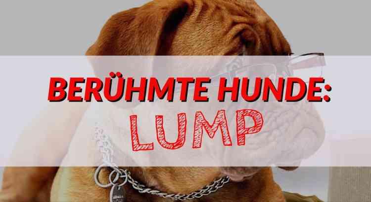 Berühmte Hunde: Lump