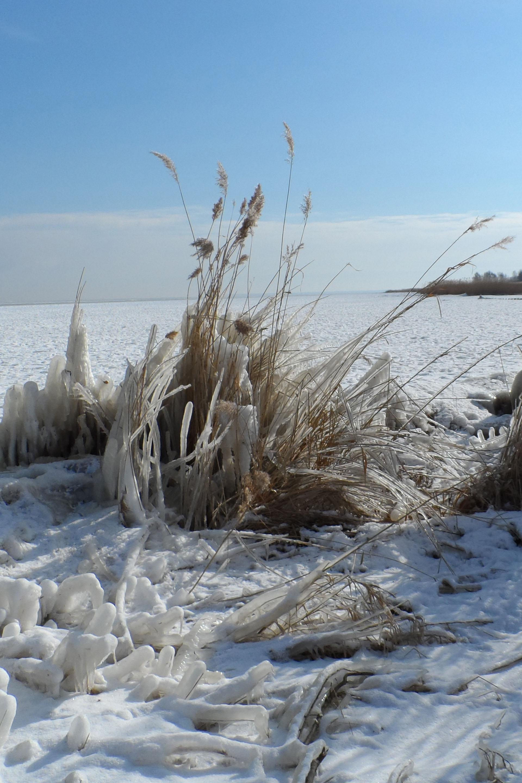 Schnee und Eis verwandeln das Stettiner Haff im Winter in eine Märchenwelt.