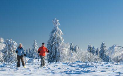 Auf Schneeschuhen lässt sich die winterliche Ruhe abseits der Pisten am besten genießen.