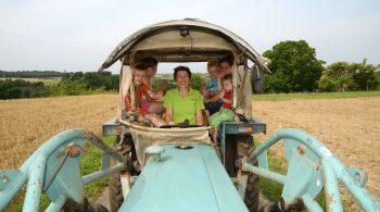 In der Region gibt es zahlreiche Bauern- und Reiterhöfe, die mit prallem Landleben und tollem Ferienprogramm locken.