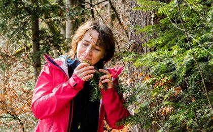 Waldbaden und Wandern