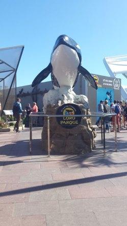 Orcashow Eingang