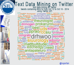 Text Mining and Data Mining on the Twitter Timeline using R