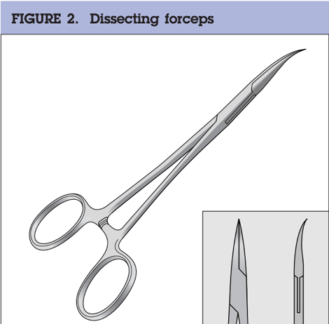 Dissecting-forceps-Li-vasectomy-no-scalpel-vasectomy-pince-vasectomie-sans-bistouri-Hupertan-specialiste-vasectomie