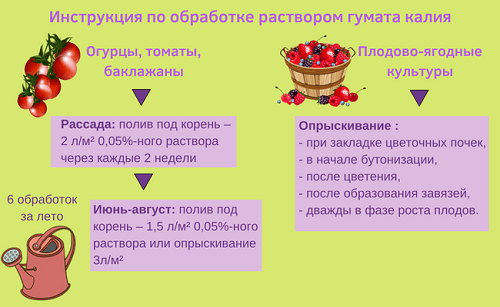 Podkormka Ovohchej.