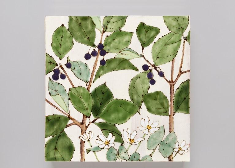 Invasive:Endangered (Twin Leaf & Common Buckthorn)