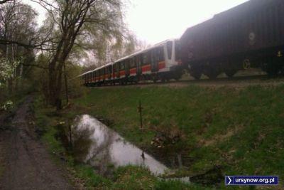 Akcja się rozwija - za lokomotywą mamy wagon towarowy, a na doczepkę cały skład nowiutkiego pociągu II linii metra. Na razie w lesie. Linia i skład też. Fot. Krzysztof Śmietana.