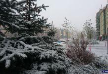 Poranny obrazek z Alei KEN na Kabatach. Śnieg wyprzedził świąteczny sezon handlowy, co należy uznać za sukces pogody. Fot. Maciej Mazur
