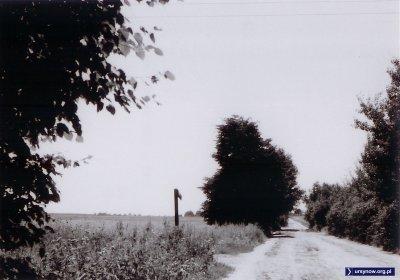 1972. Migdałowa róg Mandarynki