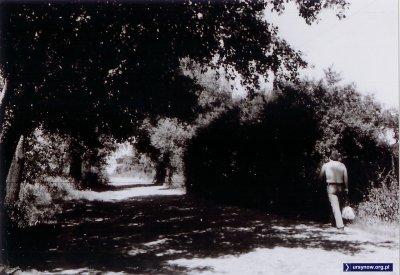 1972. Nowoursynowską topless