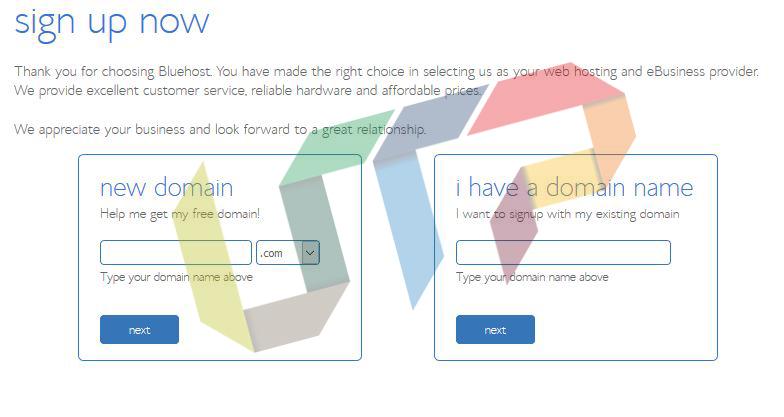 Free Domain Name