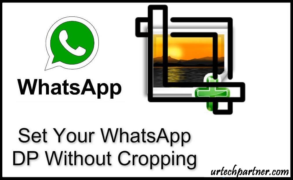 Whatsapp profile picture without crop