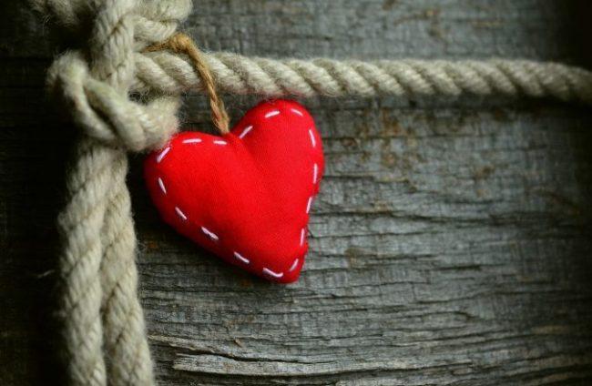 L'amore è l'elemento essenziale di ogni essere vivente