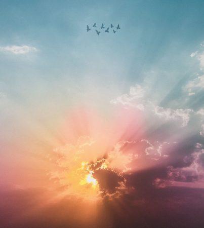 I detti del Profeta (7)
