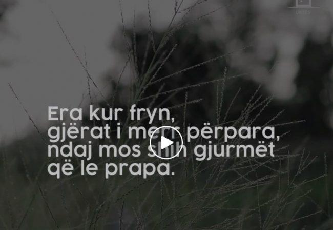 Harrojeni të shkuarën-Video