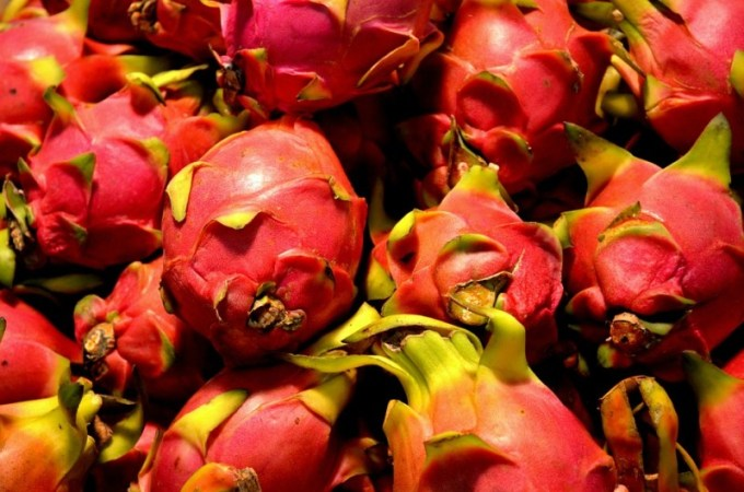 dragon-fruit-84719_960_720