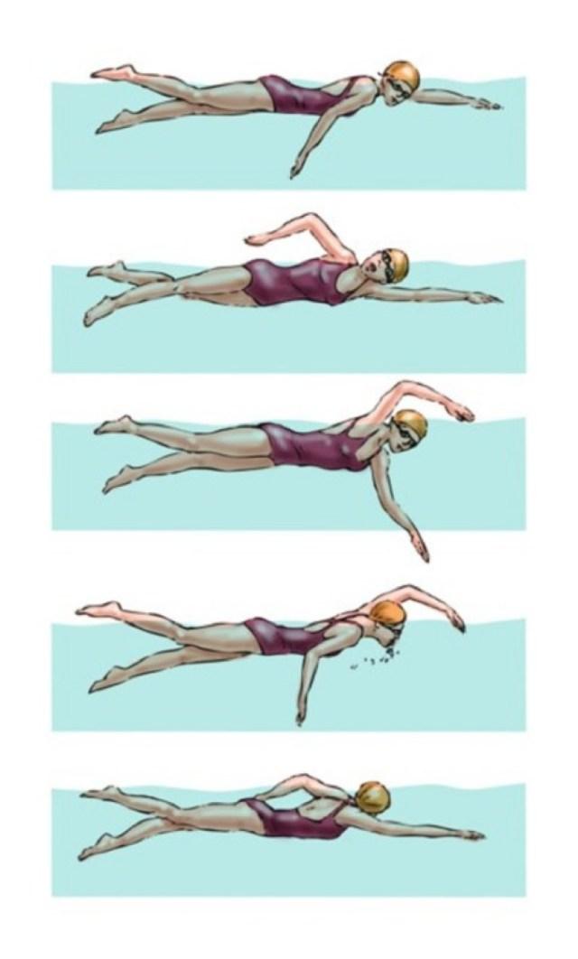 Teknik Berenang Gaya Katak : teknik, berenang, katak, Kemahiran, Renang, CIKGUCHANNEL