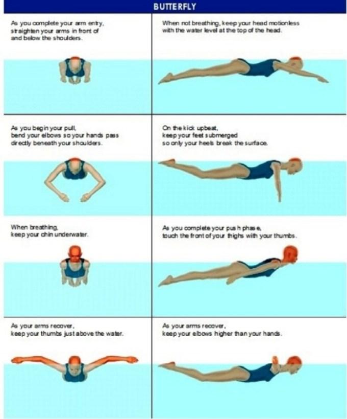 Teknik Berenang Gaya Katak : teknik, berenang, katak, HazimHamid, CIKGUCHANNEL
