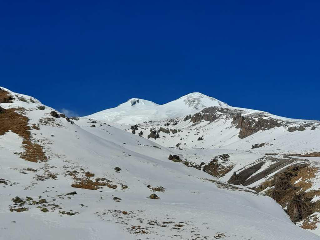 Дикая природа в горах Италии